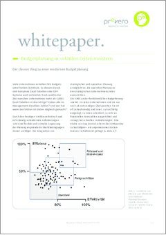 Whitepaper budgetplanung in volatilen zeiten uwe seidel de %282%29