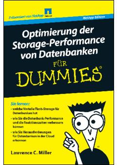 Wp optimizing database storage performance for dummies