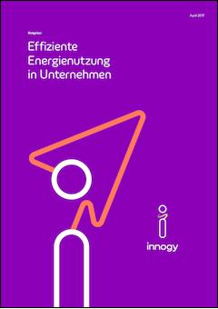 17 04 13 innogy energieeffizienz whitepaper v1