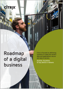 Roadmap of a digital business intl